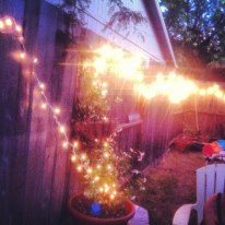 my tinkly backyard. we date here.