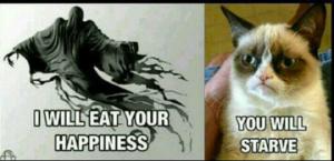 this makes me laugh.