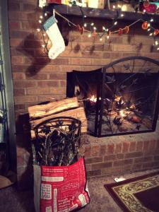 i think i miss fireplaces most of all. and yes, i gathered my kindling from the yard in a lululemon bag.