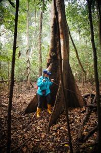 roaming around ze jungle