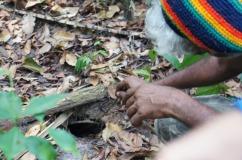Samir doing some tarantula hunting.