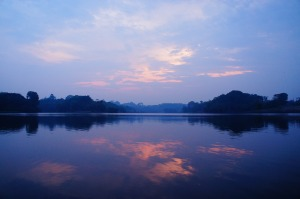 noninvasive photo of a sunrise over the amazon