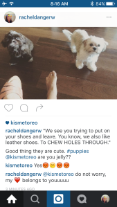 if we set up a frenchie/goat instagram, I can stop being weird and trolling my mom's dog.